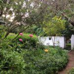 Temenos magic garden
